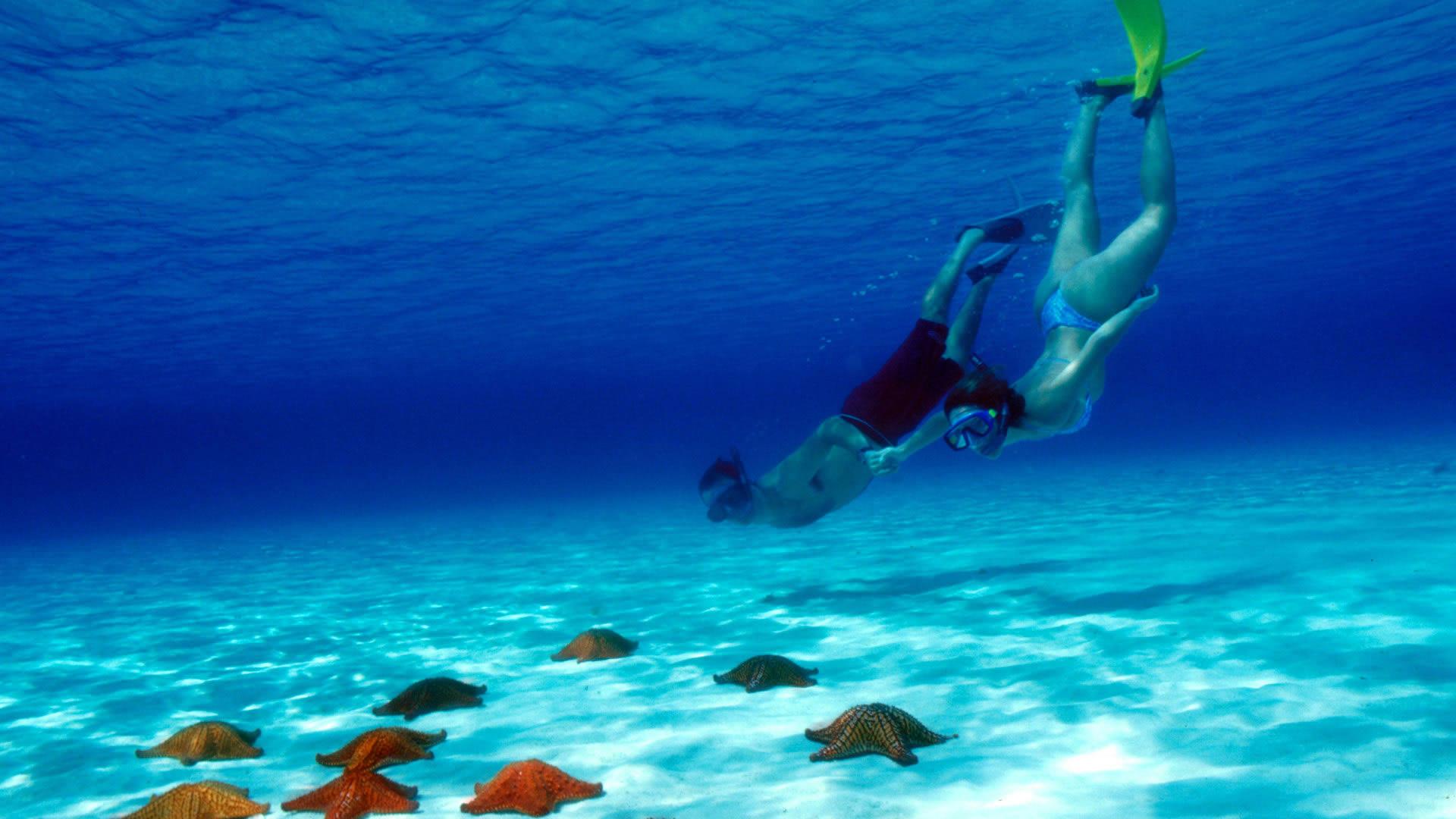 Resultado de imagen para buceo en cancun cozumel